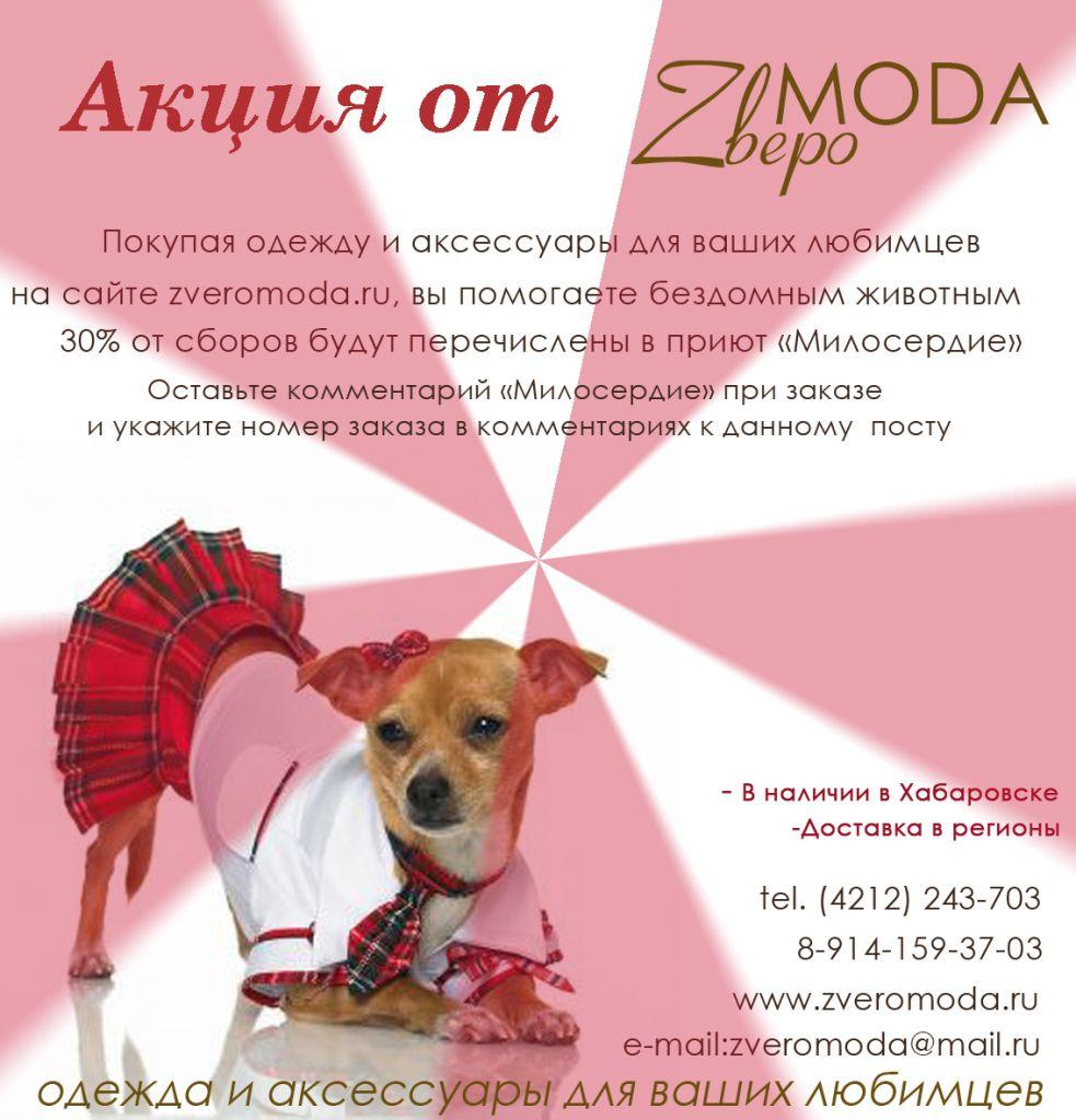 Акция от ZвероMODA